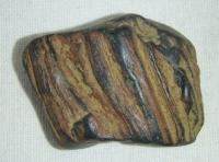 Pravděpodobně zkamenělé dřevo